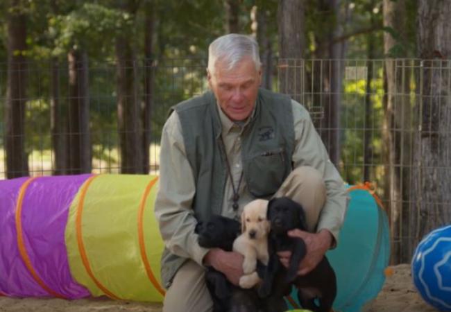Sosialisasi Anak Anjing Sejak Dini