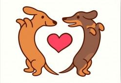 Estrus dan Kawin pada Anjing