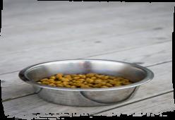 'Bola-Bola Renyah' - Resep Makanan Pendamping Anjing Anda